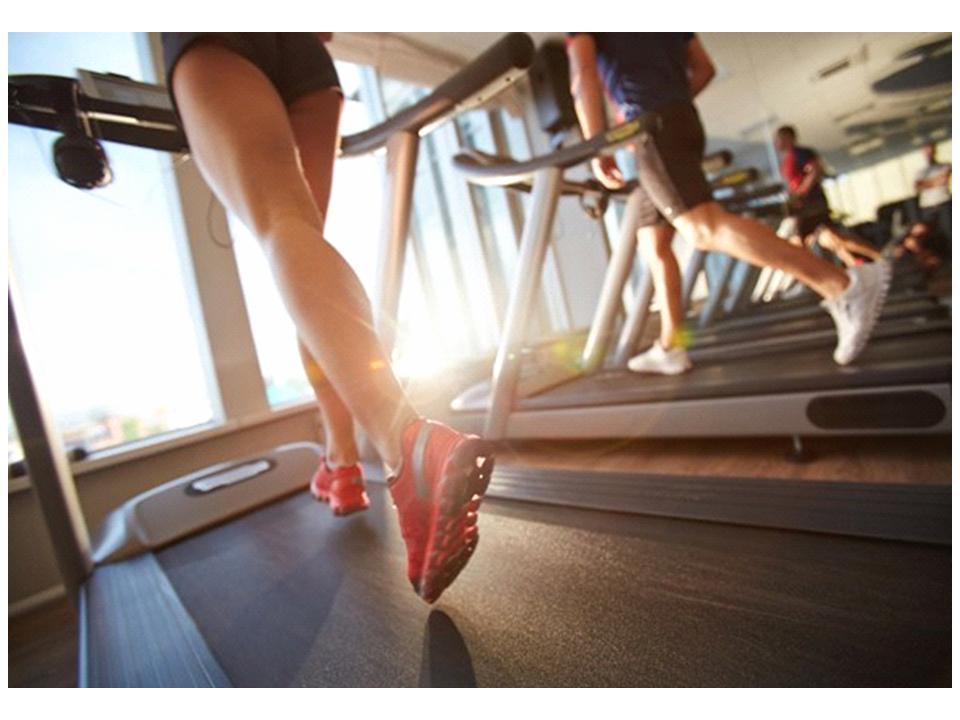 get plenty of exercise