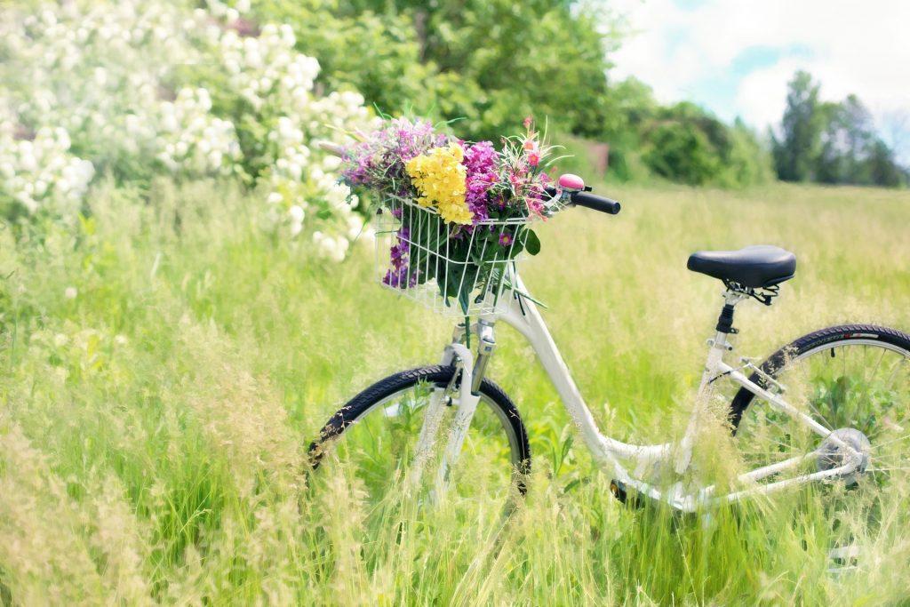 best bike seat