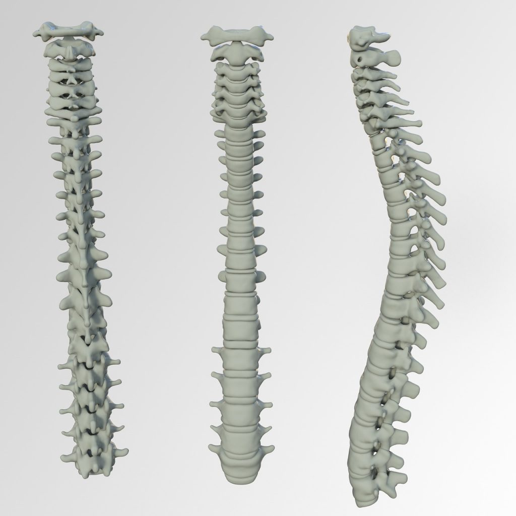 spine problems from poor posture