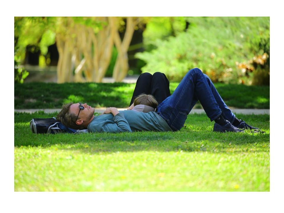 men taking a nap